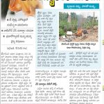Plastic-and-risk-of-cancer-Eenadu-22-5-2019
